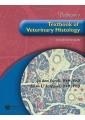 Veterinary Textbooks - Textbooks - Books 22