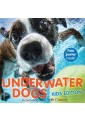Pets - Nature, The Natural World - Children's & Young Adult - Children's & Educational - Non Fiction - Books 20