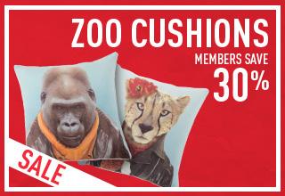 Zoo Cushion Specials